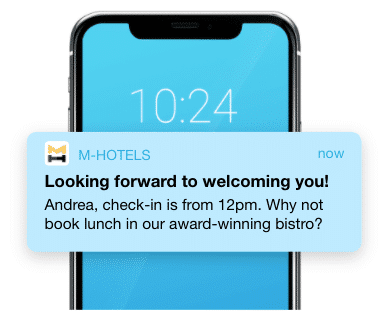 Website notifications for travel and hospitality brands